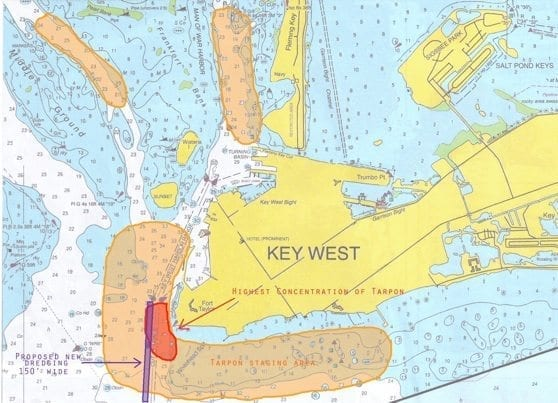key-west-dredge-tarpon-graphic